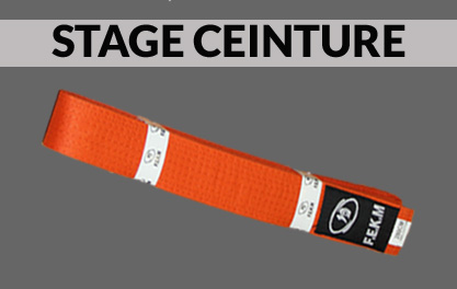 Stage technique Ceinture Orange